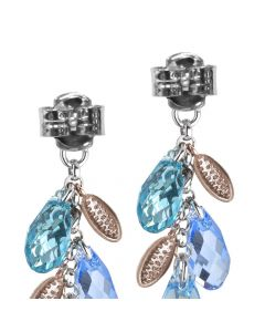 Earrings bicolor pendant with a bunch of Swarovski and zircons